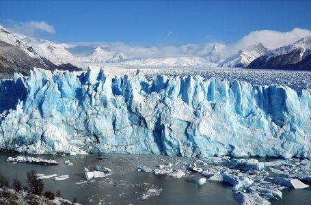 İklim değişikliği, 50 yıl içinde canlı türlerinin üçte birini yok edebilir