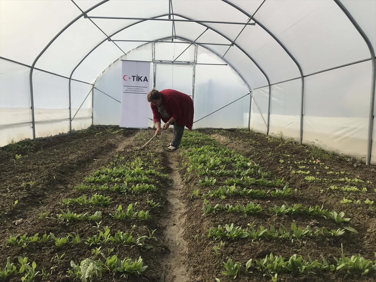 TİKA ile Bosnalı kadınlar tarımsal ekonomiye katkı sağlıyor