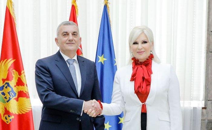 Sırbistan ve Karadağ enerji işbirliği yapacak