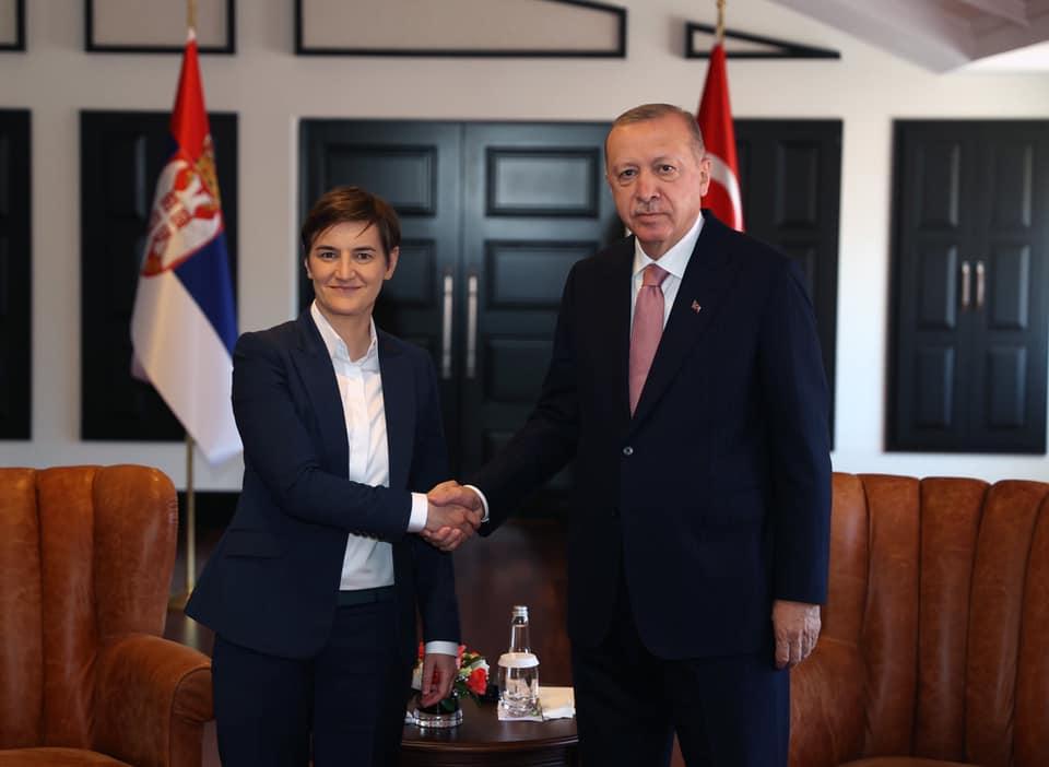 Cumhurbaşkanı Erdoğan, Sırbistan Başbakanı Brnabic'i kabul etti