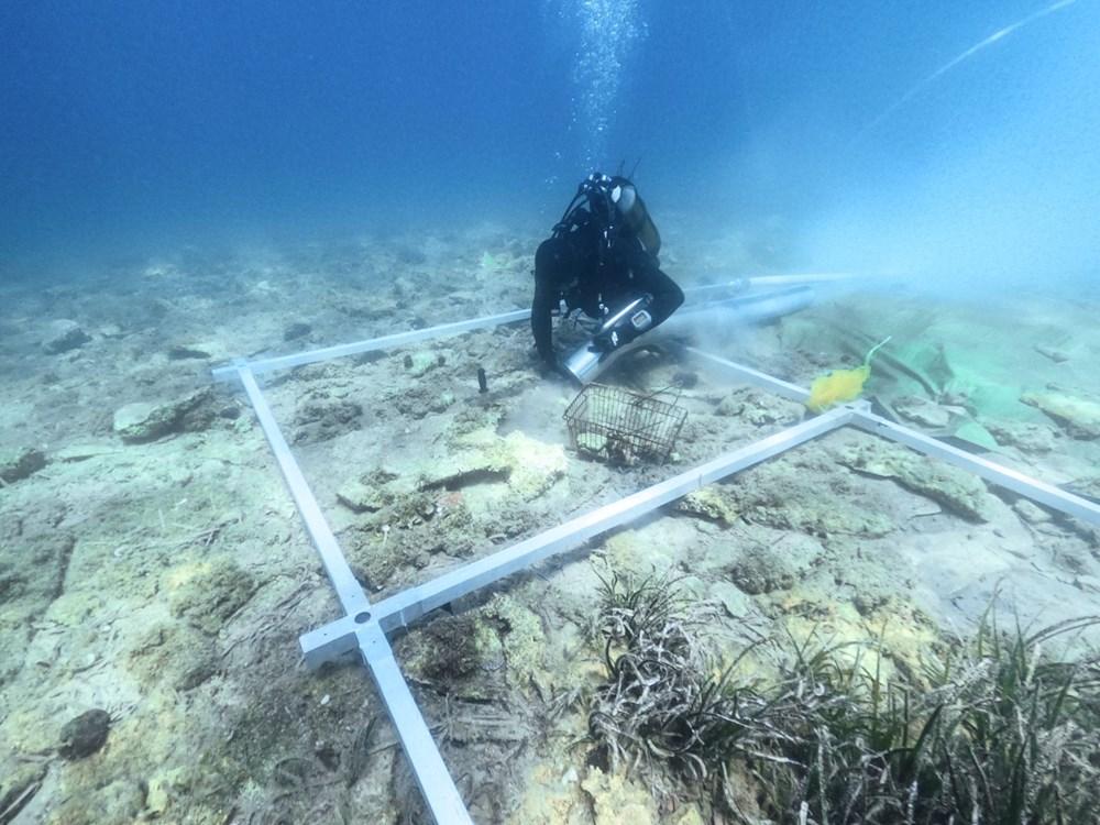 Hırvatistan kıyılarında 6 bin yıllık yerleşim alanı keşfedildi