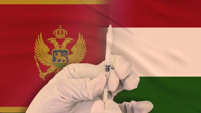 Macaristan'dan Karadağ'a 200 bin dozluk aşı yardımı